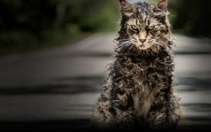 Film Review – Pet Sematary (2019)