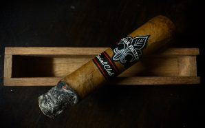 Mother's Day Cigar Review – Cigar Factory Social Club Connecticut